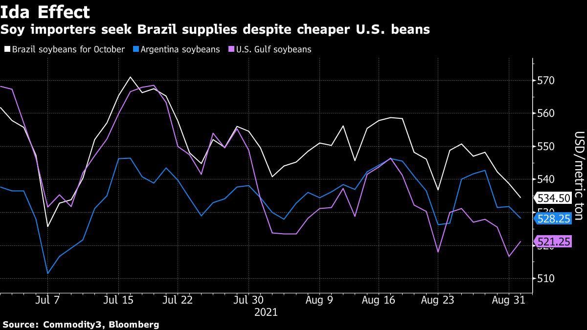 Les importateurs de soja cherchent à s'approvisionner au Brésil malgré des haricots américains moins chers. Source : Bloomberg